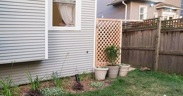 Build A Simple DIY Trellis Screen To Hide Ugly Areas In Your Backyard!