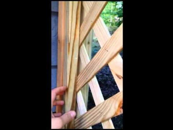 Diy lattice screen trellis