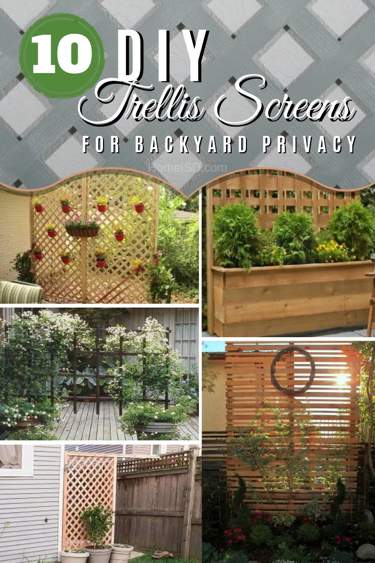 Need an additional privacy screen in your backyard? Build a DIY trellis screen. Choose one of these 10 easy ideas with tutorials. Great list! #DIY #backyard #garden