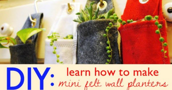 HOW TO: Learn How to Make a Mini Felt Planter to Green Your Walls