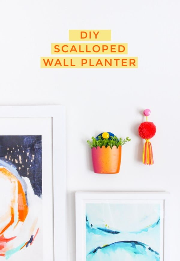 DIY Scalloped Wall Planter