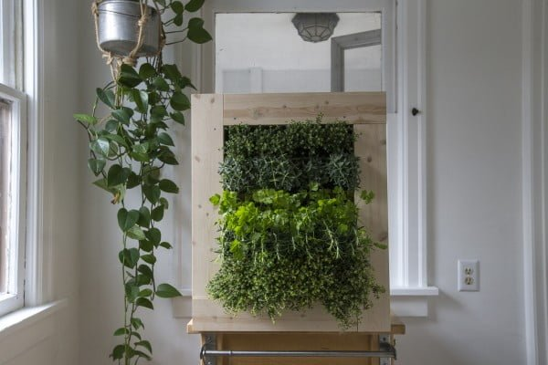How To Make A Herb Wall Planter