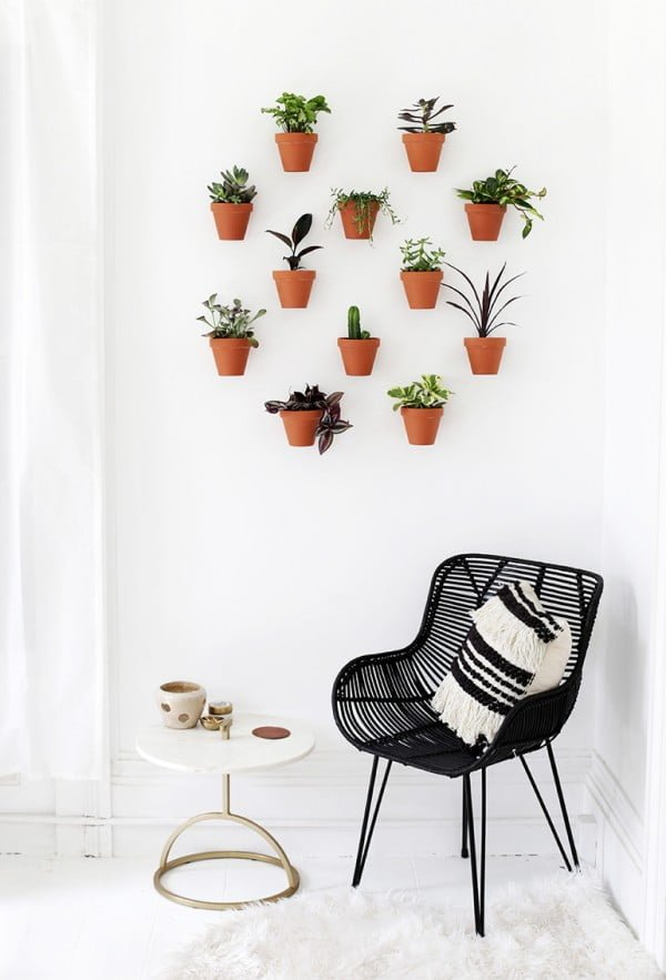 DIY Planter Wall