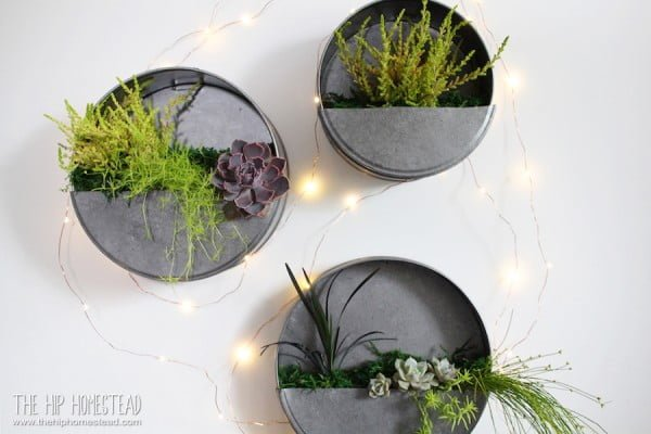 Simple DIY Galvanized Wall Planter