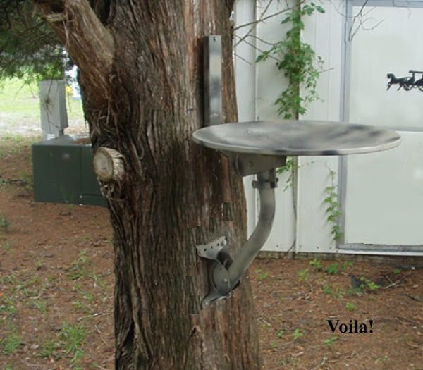 DIY bird bath made from a satellite dish