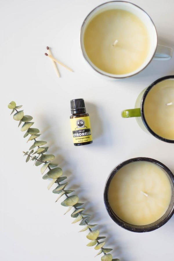 Try This: D.I.Y. Citronella & Eucalyptus Candle