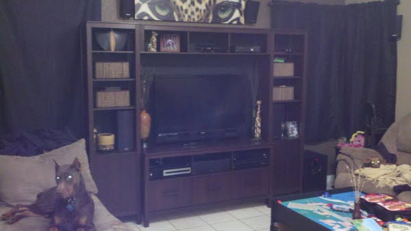 Custom Entertainment Center From Scratch (Only $350)