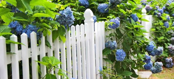 How to DIY a White Picket Fence #DIY #backyard #garden #woodworking