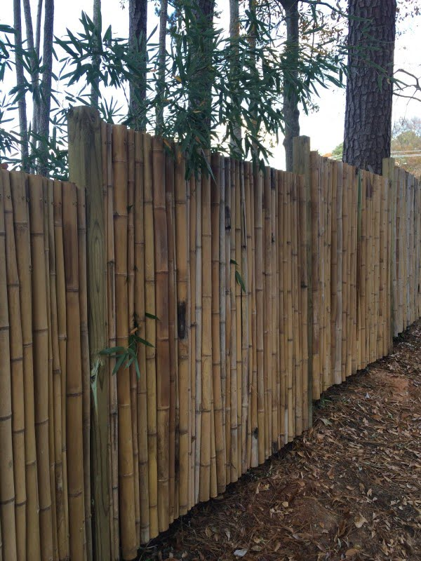 Bamboo Fence #DIY #backyard #garden #woodworking