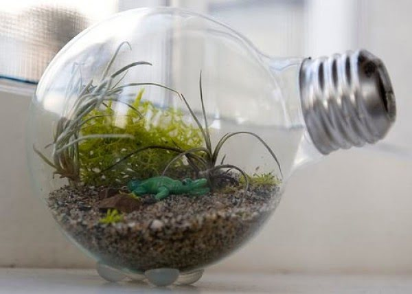 DIY: How to make a light bulb terrarium #DIY #homedecor #craft #repurpose