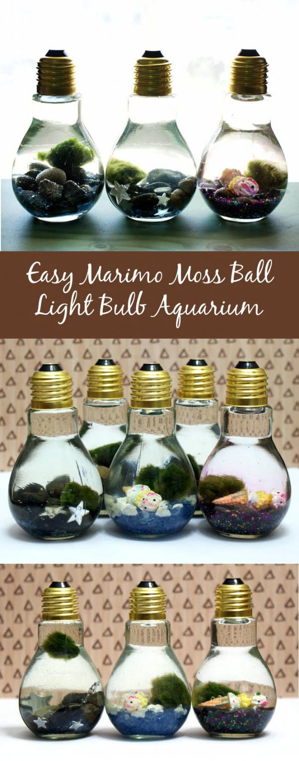 Easy DIY Light Bulb Aquarium #DIY #homedecor #craft #repurpose