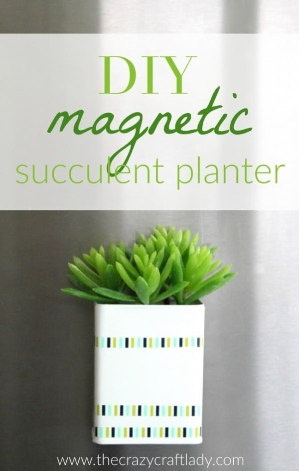 DIY Magnetic Succulent Planter