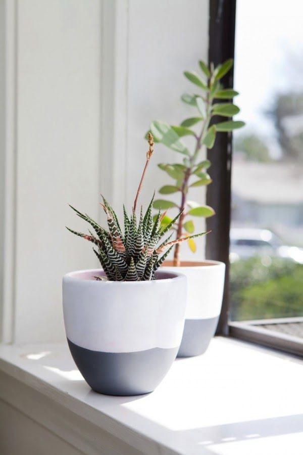 DIY // Succulent Pots