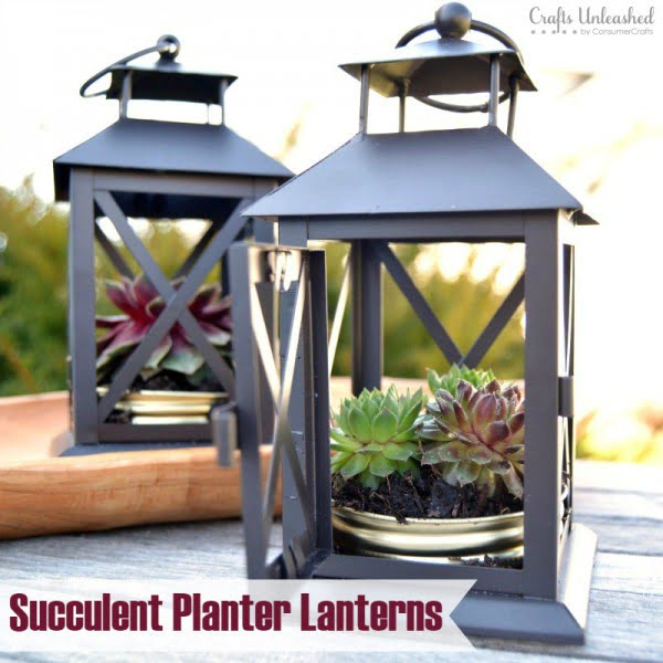 DIY Succulent Planter: Repurposed Lantern- Crafts Unleashed
