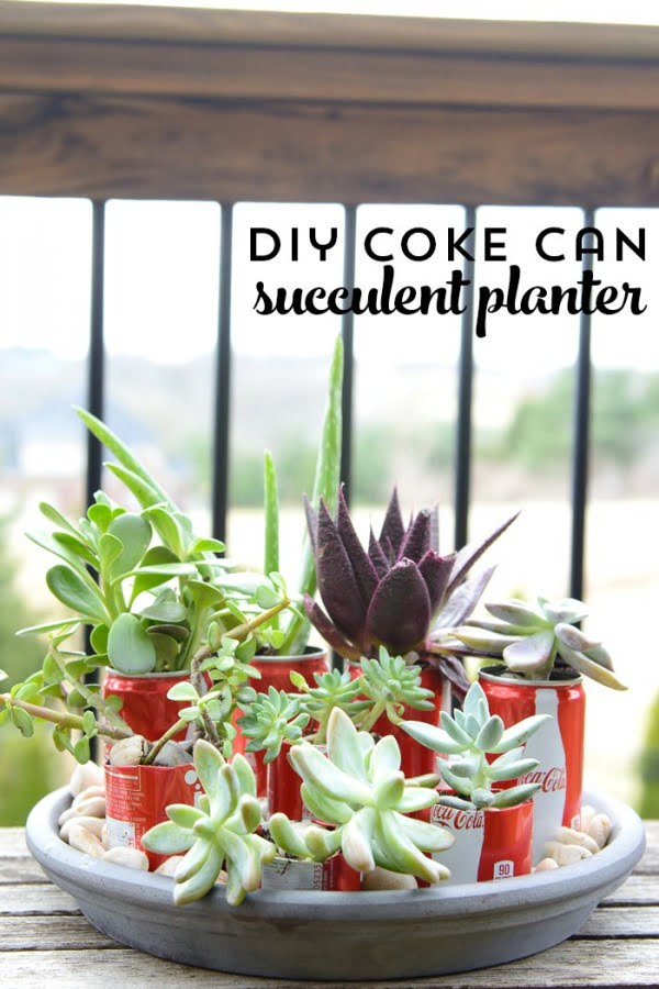 DIY Coke Can Succulent Planter