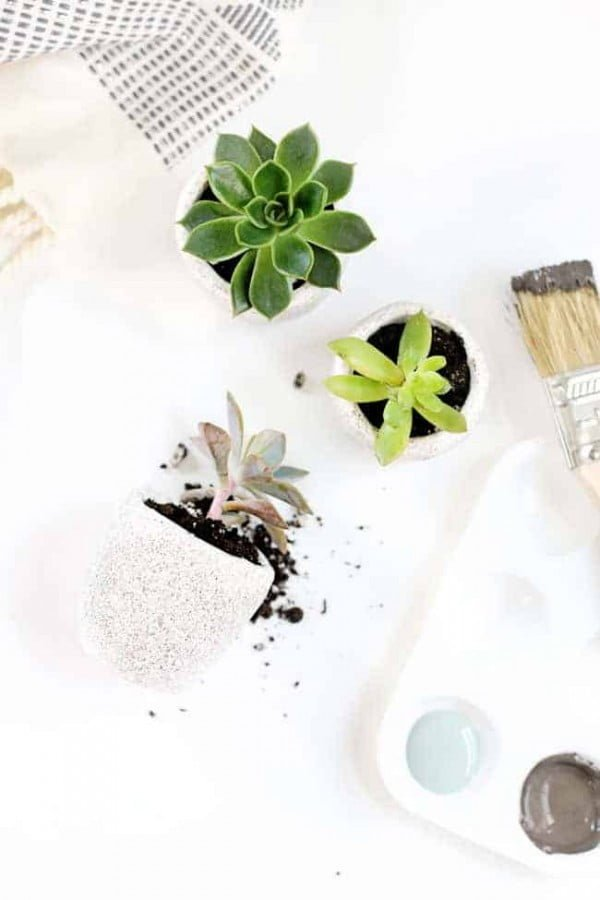 We're Completely Obsessed With These DIY Mini Succulent Pots