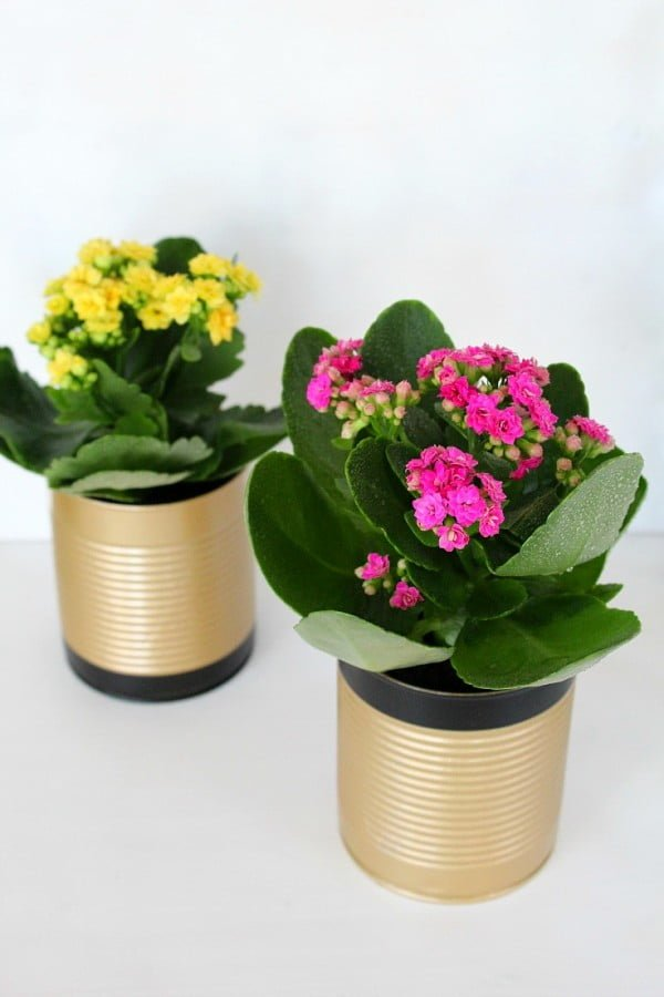 How to make tin can flower pots #DIY #homedecor #tincan #crafts #repurpose #upcycle