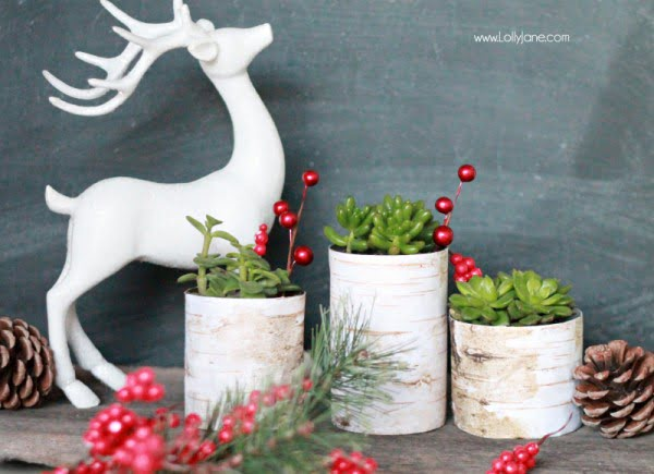birch wood tin can planters #DIY #homedecor #tincan #crafts #repurpose #upcycle