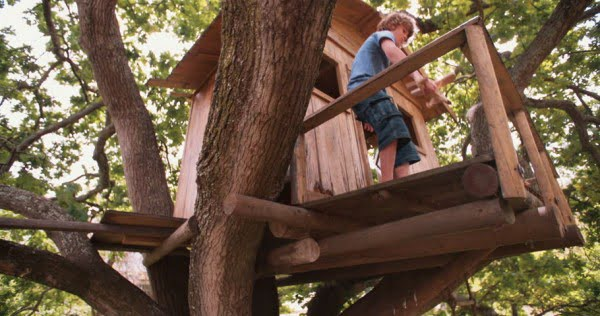 How to Build a DIY Treehouse