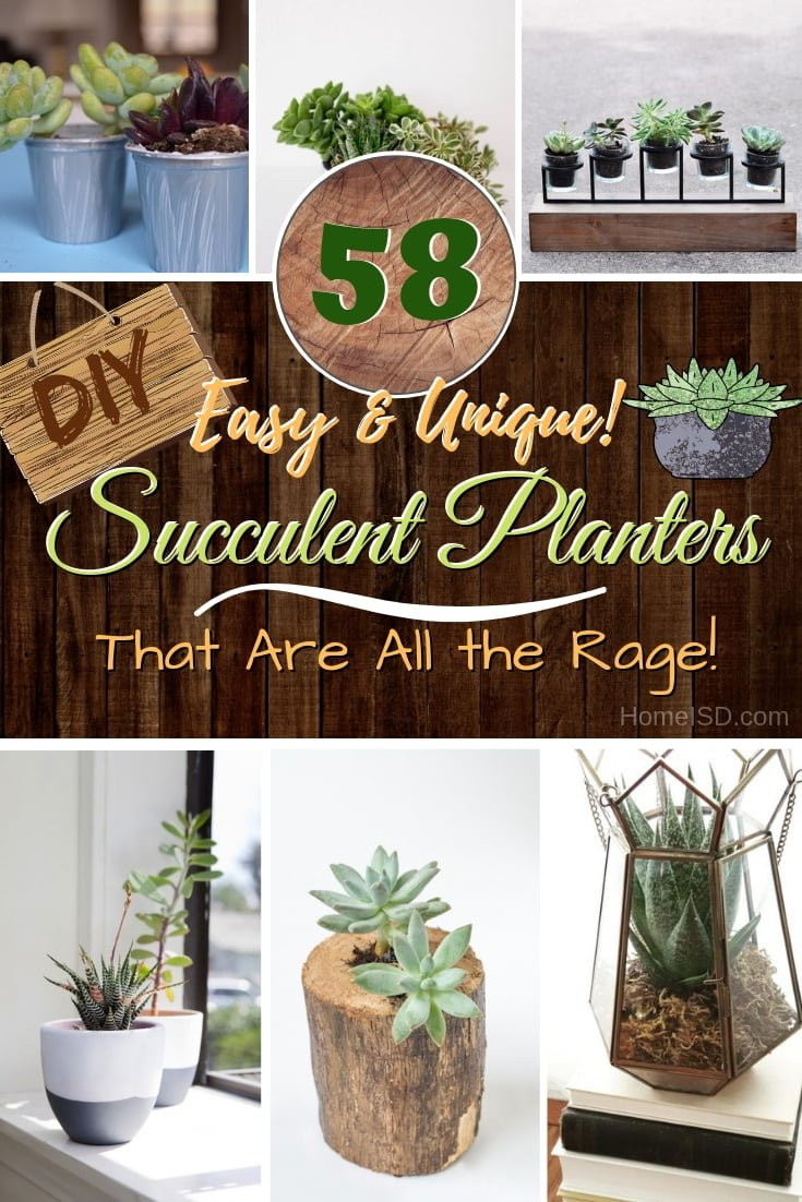 Decorate your home with succulents the easy way. Make these unique DIY succulent planters. Great ideas! #DIY #homedecor #succulents #garden