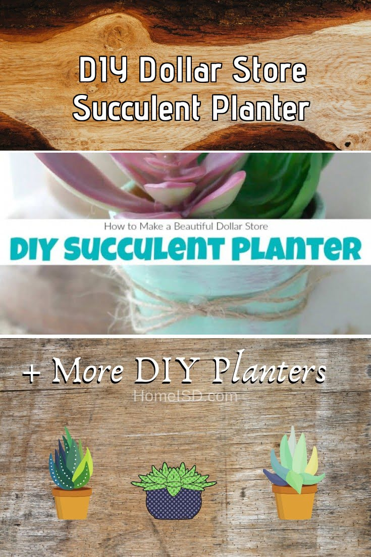 DIY Dollar Store Succulent Planter