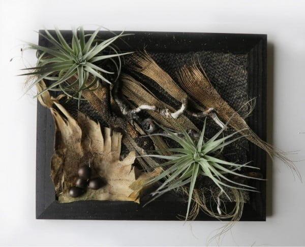 DIY-framed-succulent-collage-easy-maintenance
