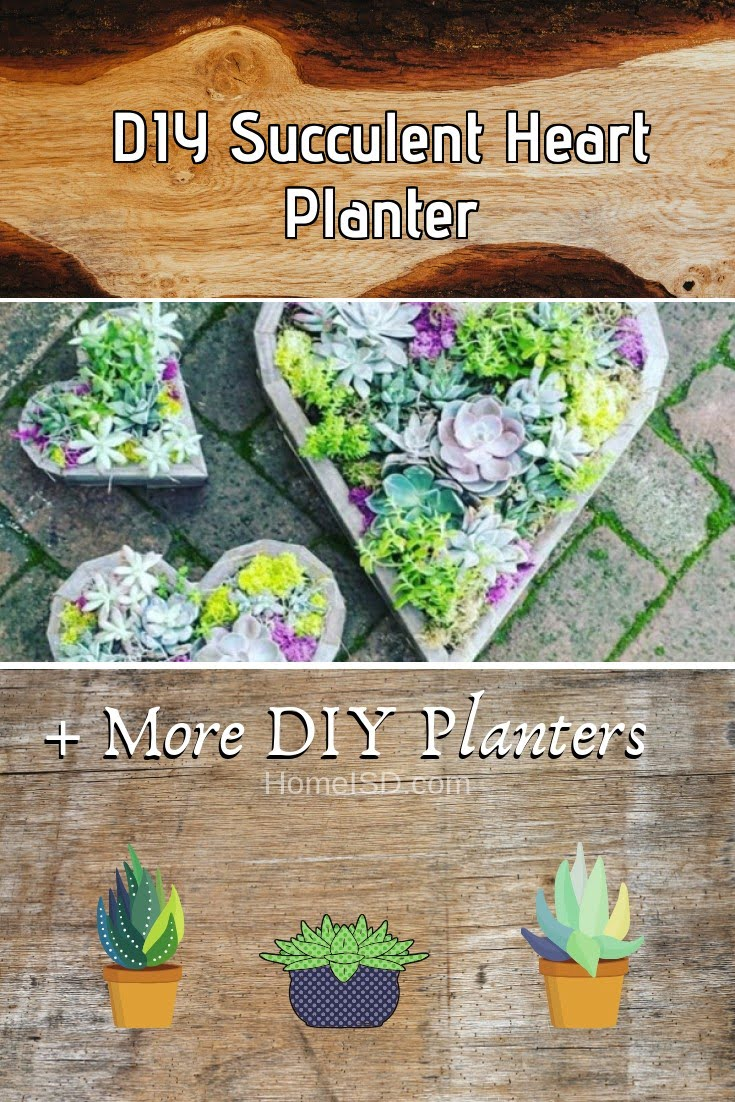 DIY Succulent Heart Planter