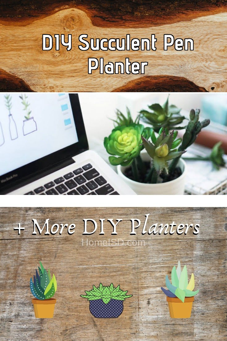 DIY Succulent Pen Planter