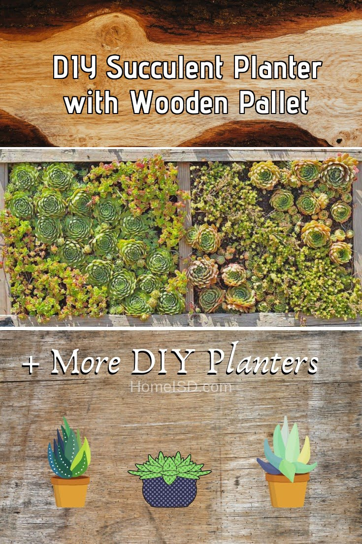 DIY Succulent Planter with Wooden Pallet