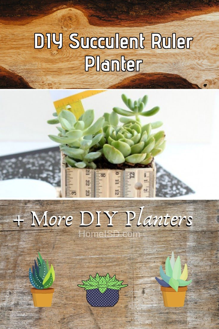 DIY Succulent Ruler Planter