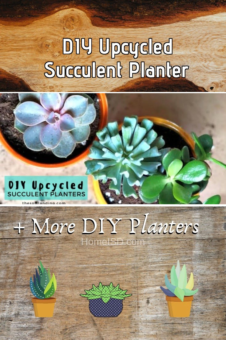 DIY Upcycled Succulent Planter