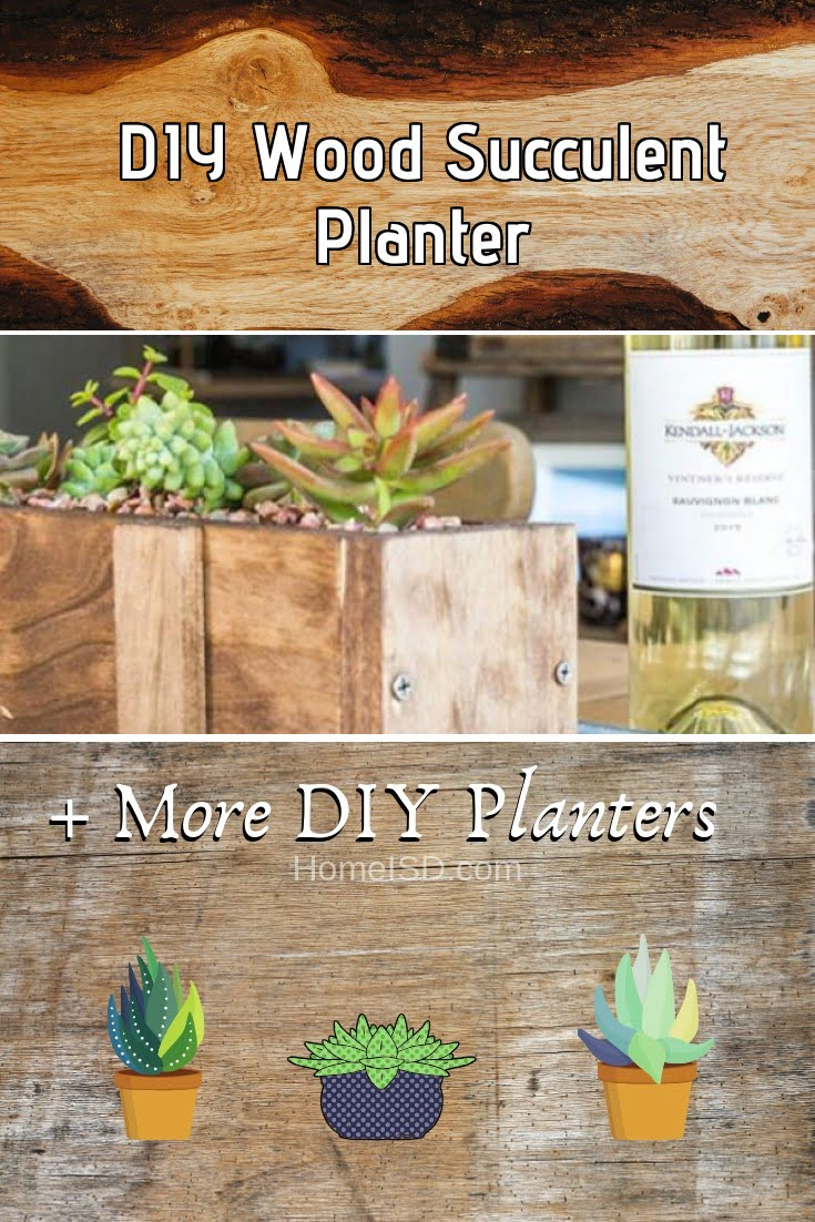 DIY Wood Succulent Planter