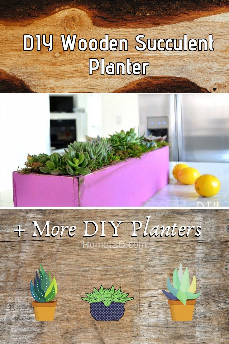 DIY Wooden Succulent Planter