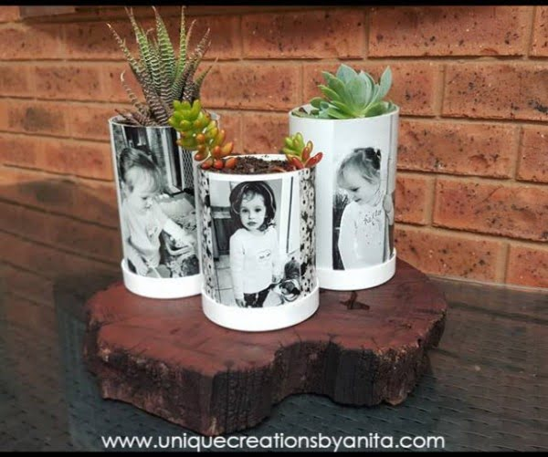 PVC Pipe Photo Planters  pipe