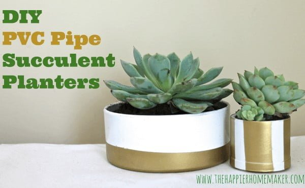 DIY PVC Pipe Succulent Planters #pvc #pvcpipe #homedecor #DIY