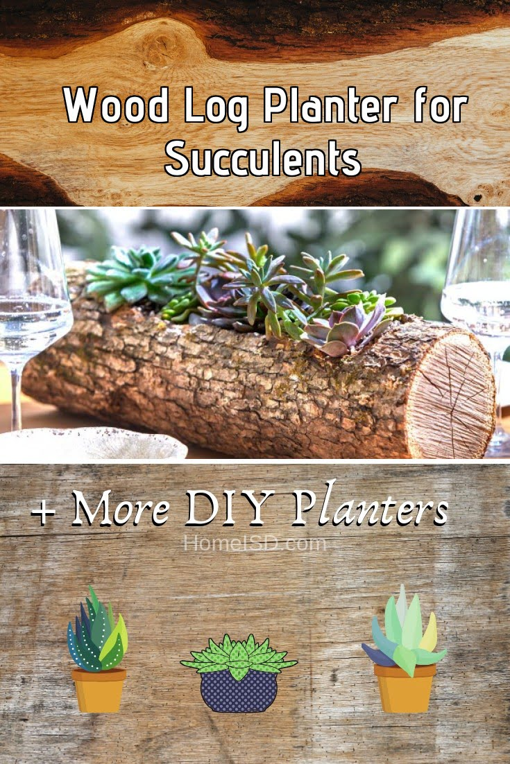 Wood Log Planter for Succulents