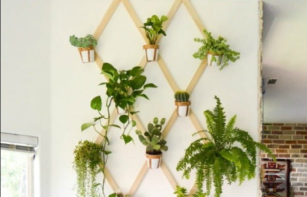 DIY Plant Trellis #DIY #indoor #trellis #houseplants #homedecor