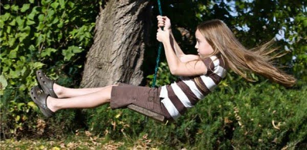 How to Install a Tree Swing Safely