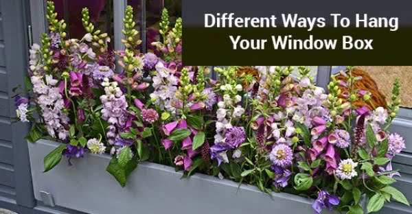 DIY Hanging Window Box #DIY #windowbox #planter #gardening