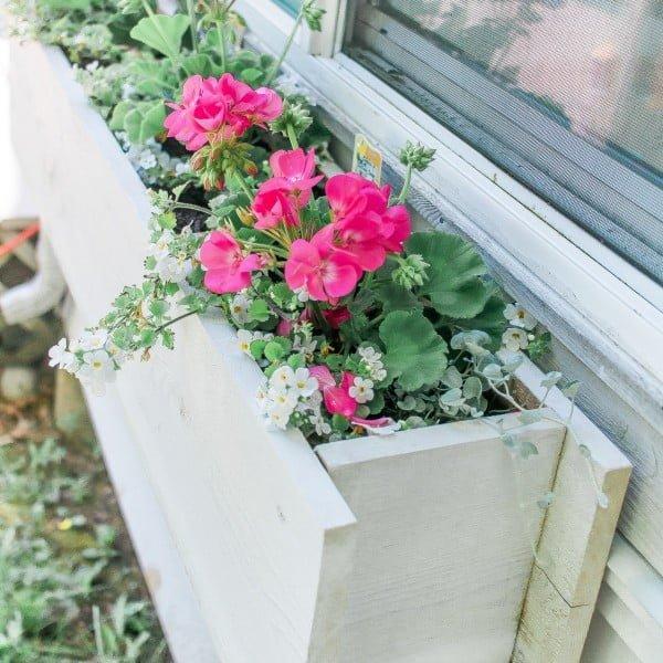 Easy Flower Window Box DIY #DIY #windowbox #planter #gardening