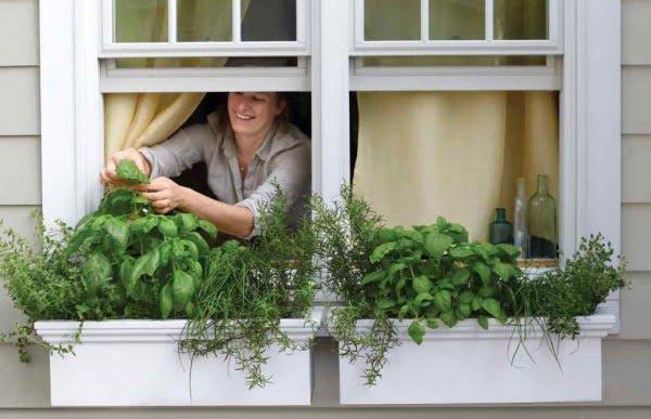 Summer Garden Project: DIY Edible Window Box Planter #DIY #windowbox #planter #gardening