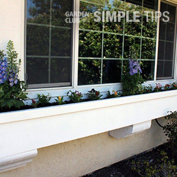 Dress Up Windows: DIY Window Box #DIY #windowbox #planter #gardening