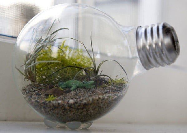 20 Easy DIY Succulent Terrarium Ideas for the Most Decor Value