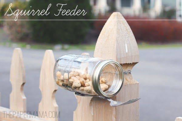 DIY Squirrel Feeder (Mason Jar)