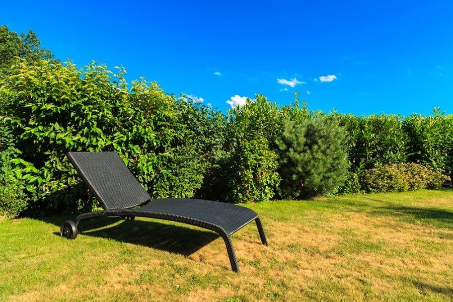 lawn recliner