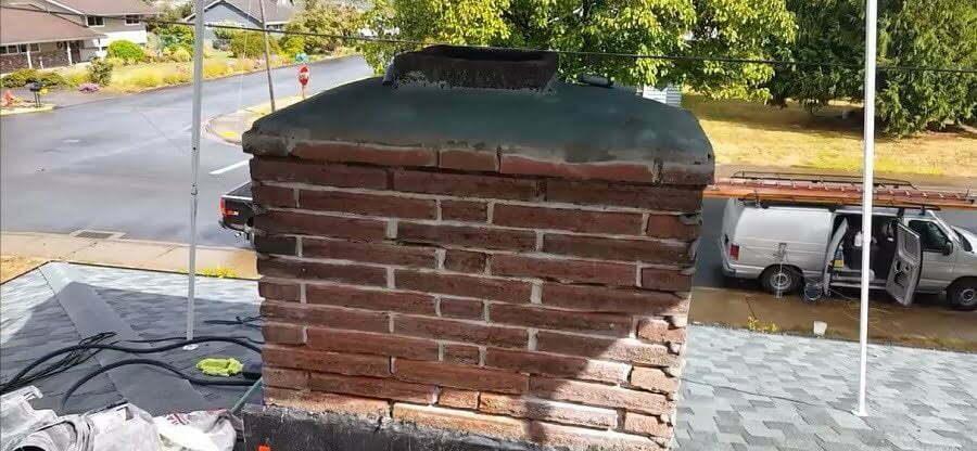 chimney animal removal