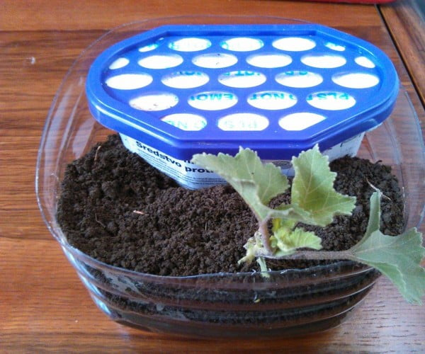 Dehumidifier Based Self Watering Pot