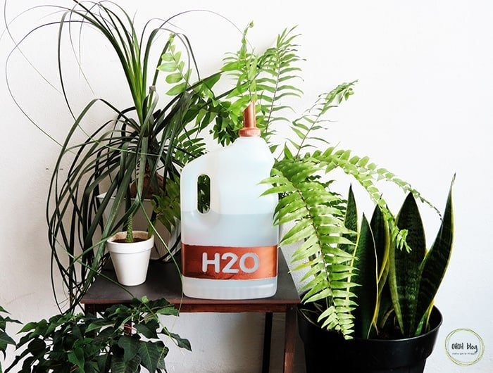 diy watering can with nozzle