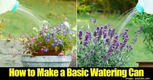 How to Make A Simple Homemade Watering Can