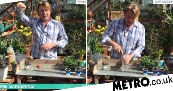How to make DIY watering can and bird-feeder with household waste in lockdown